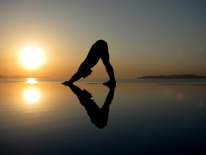 bigstock-Downward-dog-29095142-astanga1
